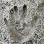 cement-proizvodstvo-osnovnye-vidy-i-markirovka