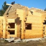 строим большую баню из бруса или бревна на даче из натуральной древесины фото. Дуб, осина, кедр