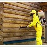 Способы защиты деревянного дома