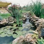 Про декоративные водоемы на даче